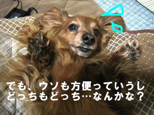 IMG_2416blog.jpg