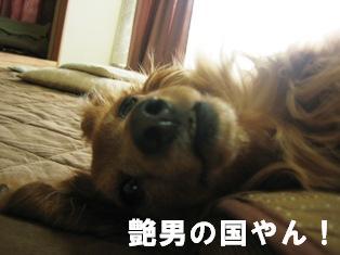 IMG_2448blog.jpg