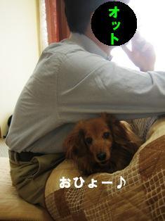 IMG_2655blog.jpg