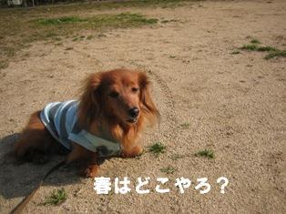 IMG_2665blog.jpg