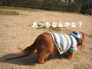 IMG_2666blog.jpg