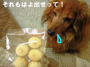 IMG_2667blog.jpg
