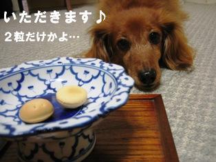 IMG_2672blog.jpg