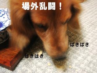 IMG_2678blog.jpg