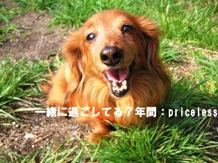 IMG_2691blog.jpg