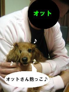 IMG_2718blog.jpg