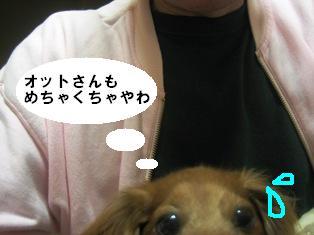 IMG_2723blog.jpg