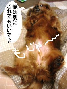 IMG_2724blog.jpg