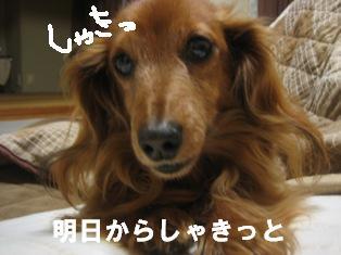 IMG_2758blog.jpg