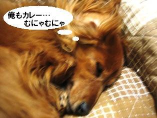 IMG_2769blog.jpg