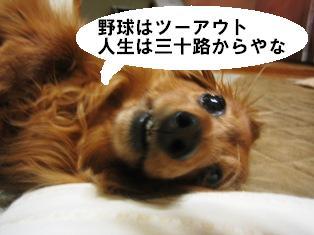 IMG_2795blog.jpg