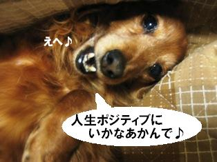 IMG_2813blog.jpg