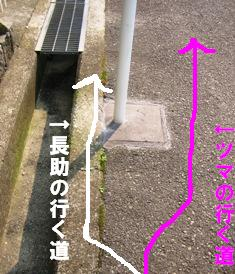 IMG_2821blog.jpg