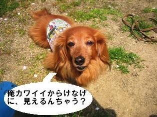 IMG_2825blog.jpg