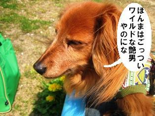 IMG_2826blog.jpg