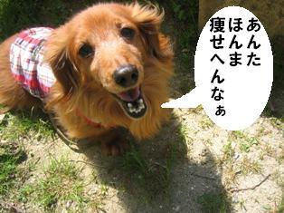 IMG_2859blog2.jpg