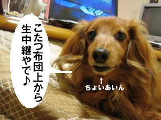 IMG_2871blog.jpg