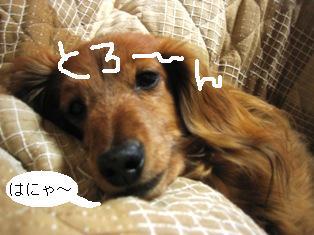 IMG_2881blog.jpg