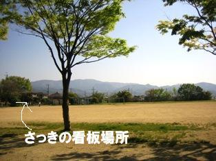 IMG_2963blog.jpg