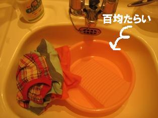 IMG_2978blog.jpg