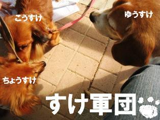 IMG_3041blog.jpg