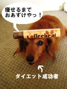 IMG_3142blog.jpg