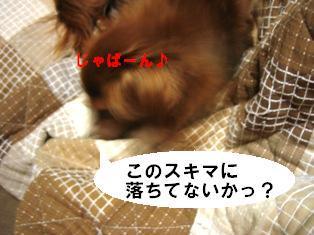 IMG_3160blog.jpg