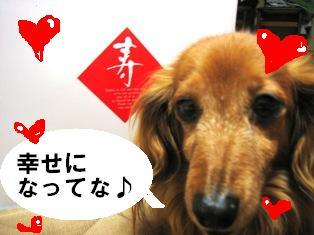 IMG_3497blog.jpg