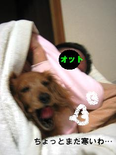 IMG_3571blog.jpg