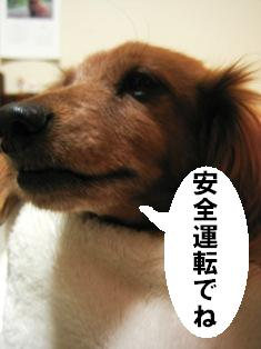 IMG_3590blog.jpg