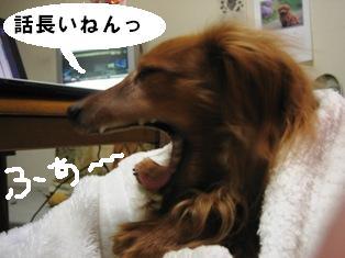 IMG_3596blog.jpg