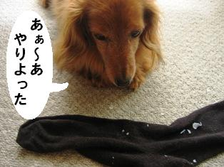 IMG_3612blog.jpg