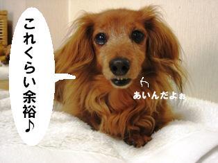 IMG_3626blog.jpg