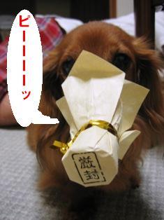 IMG_3694blog.jpg