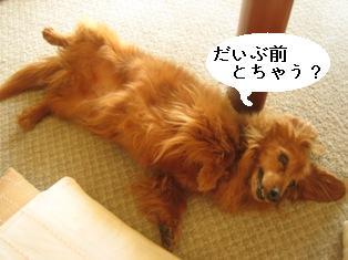 IMG_3766blog.jpg