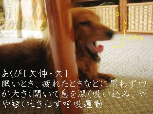 IMG_3822blog.jpg