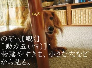 IMG_3824blog.jpg