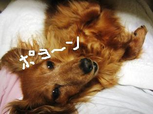 IMG_3894blog.jpg