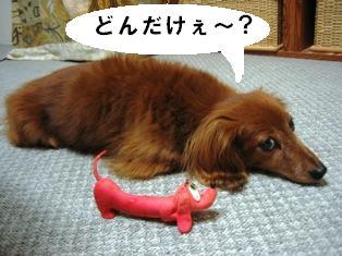 IMG_3908blog.jpg