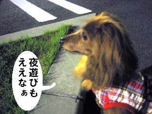 IMG_4016blog.jpg