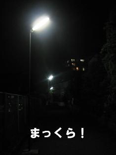 IMG_4030blog.jpg