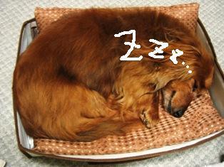 IMG_4093blog.jpg