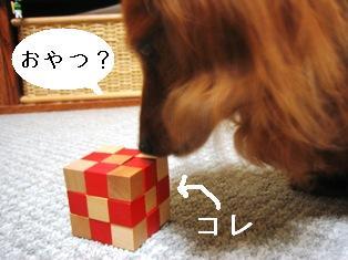 IMG_4102blog.jpg