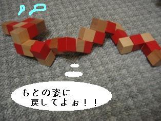 IMG_4103blog.jpg