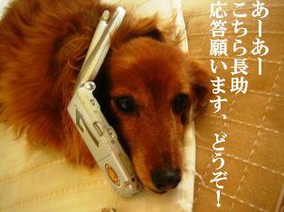 IMG_4137blog.jpg