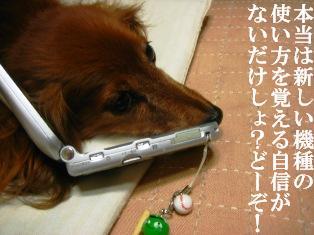 IMG_4169blog.jpg