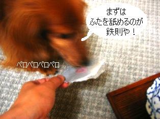 IMG_4212blog.jpg