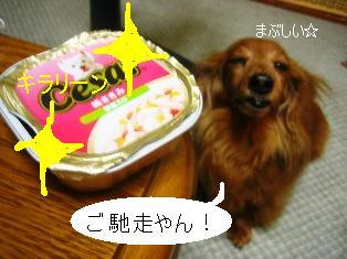 IMG_4213blog.jpg