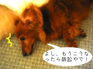 IMG_4268blog.jpg