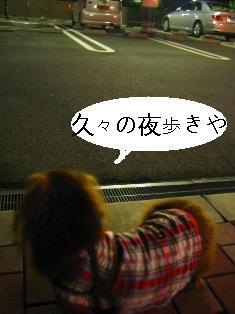 IMG_4296blog.jpg